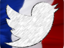 étude IPSOS sur les usages de Twitter en France