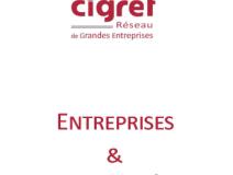 Entreprises & Culture Numérique _ CIGREF