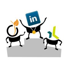 podium LinkedIn, Viadeo, Xing
