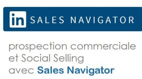 formation Linkedin Sales Navigator